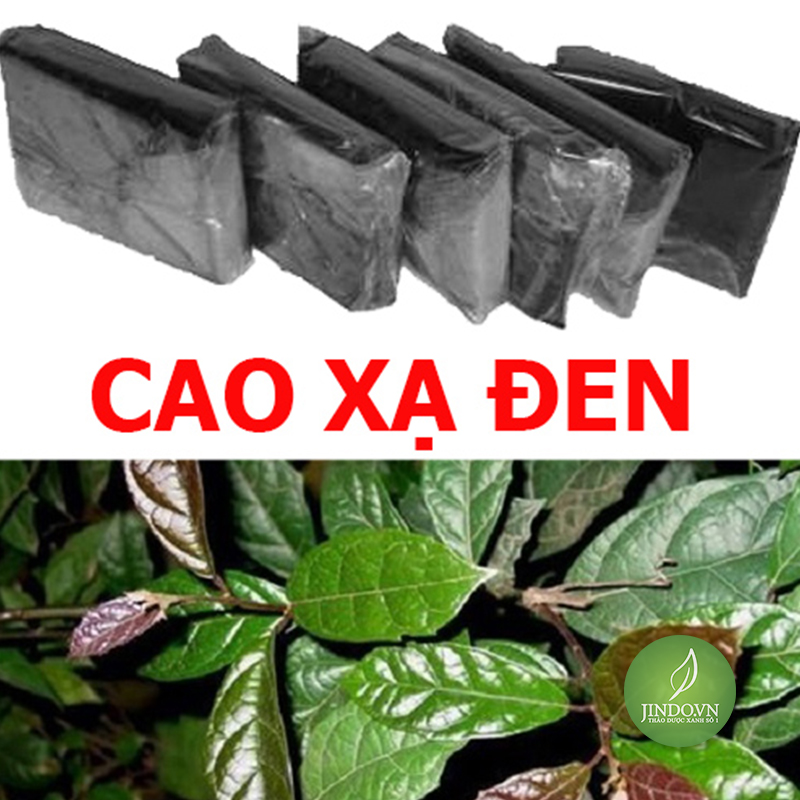 cao-xa-den-ho-tro-dieu-tri-ung-thu-thao-duoc-xanh-so-1-jindo.vn