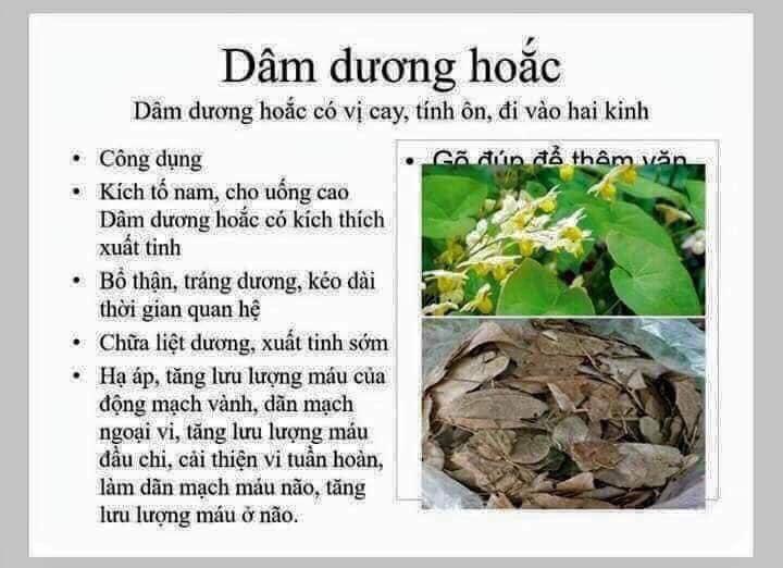 cach-ngam-ruou-la-dam-duong-hoac-thao-duoc-xanh-so-1-jindo.vn-2