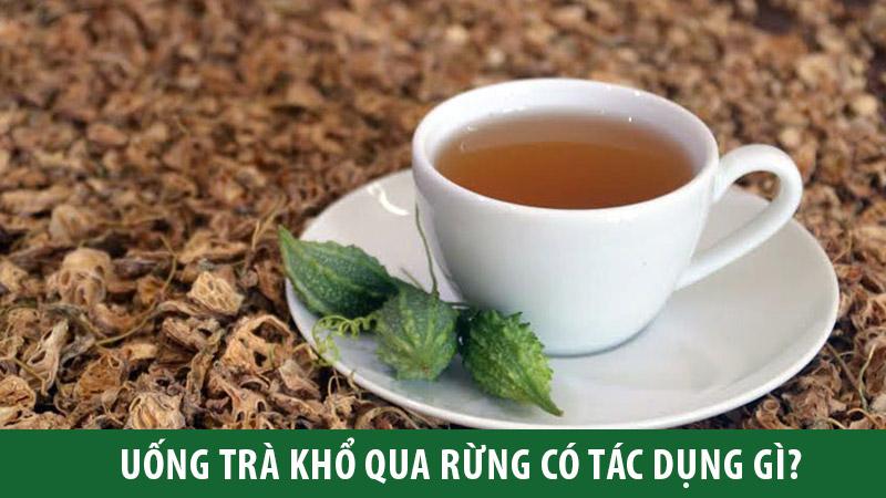 kho-qua-rung-la-gi-va-tac-dung-cua-tra-kho-qua-rung-nhu-the-nao-thao-duoc-xanh-so-1-jindo.vn-3